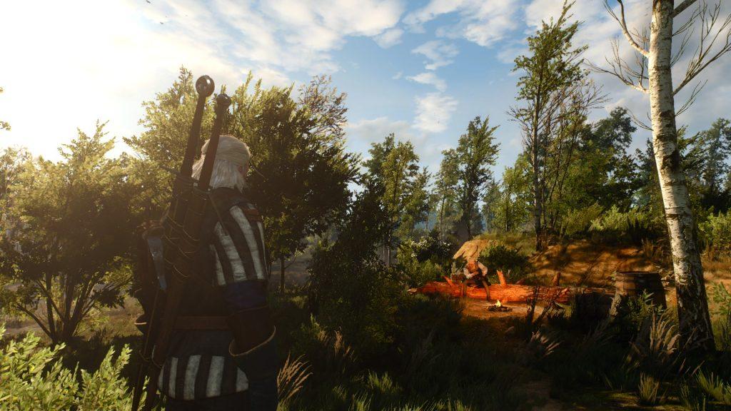 скриншот из игры ведьмак 3 дикая охота