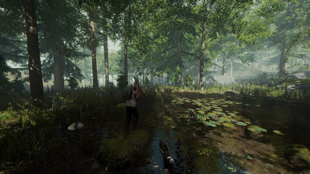 скриншот из игры the forest