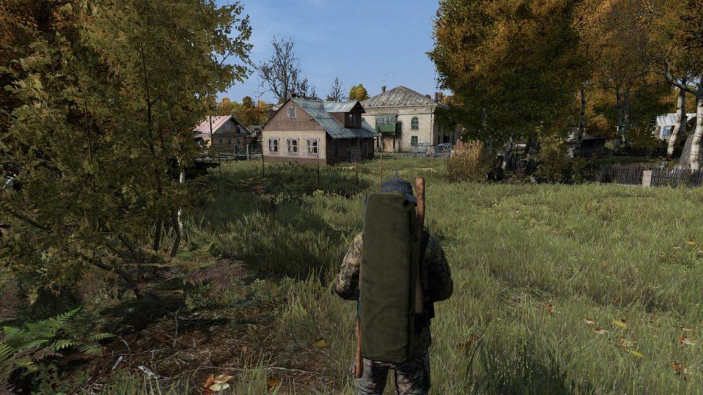 скриншот из DayZ